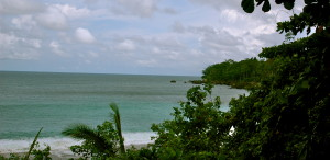 Backwash Beach is a beautiful beginner surfer beach near Matapalo on the Osa Peninsula