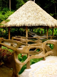 Casa Vida Verde a beautiful rental vacation home steps from the beach in Matapalo on the Osa Peninsula Costa Rica