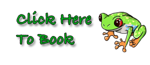 Click_here_to_Book_FROG