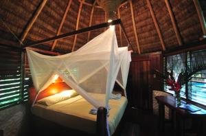 Encanta La Vida a beautiful lodge in the heart of Matapalo - book through Osa tropical now