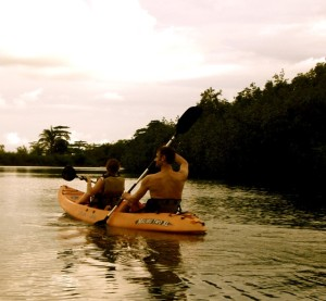 Cheapest and Best Sunset and Dolphin Kayak Tours around Puerto Jimenez and the Osa Peninsula
