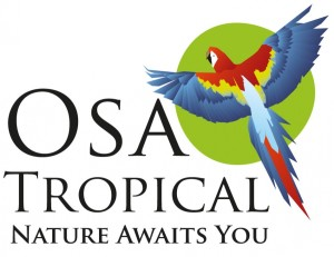 Matapalo Rental Homes/Houses | Costa Rica Travel Agent | Travel Agency Osa Peninsula, Puerto Jimenez