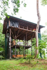 Treehouse+side+view_SMALL